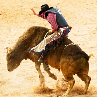 Bull Riding School in Atlanta