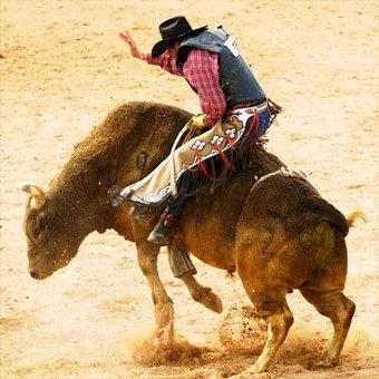 Bull Riding School in Denver