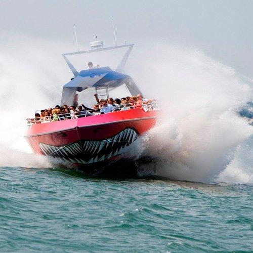 Thrilling Codzilla Harbor Boat Ride