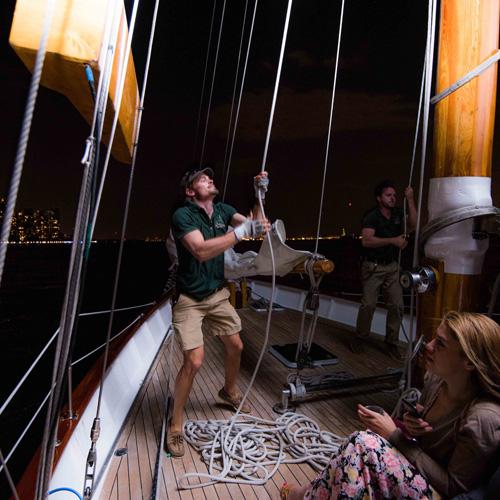 Boston City Lights Sail