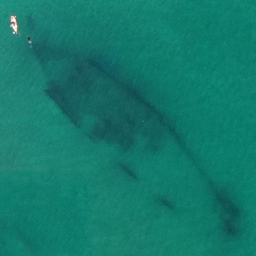 Shipwreck Sightings in North Carolina