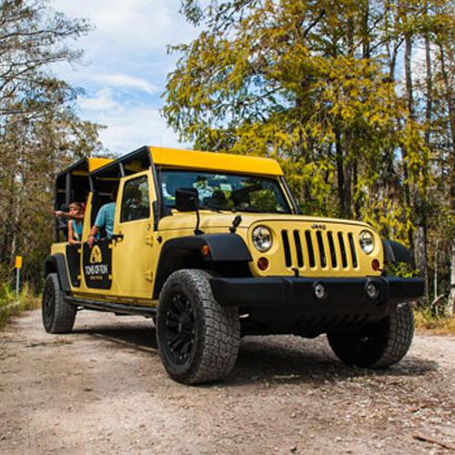 Everglades Jeep Tour near Fort Lauderdale