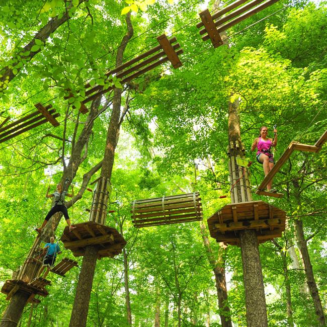 Zip Line Adventure Course