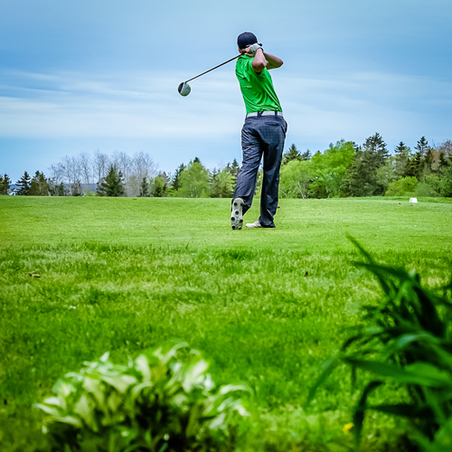 Golf Lesson with a PGA Pro at Raspberry Falls Golf Club