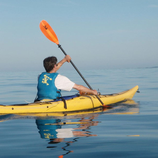 Paddle to the Brewery Tour - Cape Cod