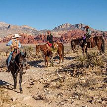 Canyon Rim Ride Las Vegas