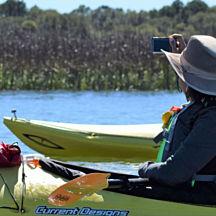 Marsh Kayaking in Charleston