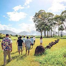 Oahu Island Tour