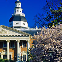 Annapolis Food and Historical Tour in Baltimore
