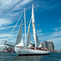 New York Harbor Sail in NYC