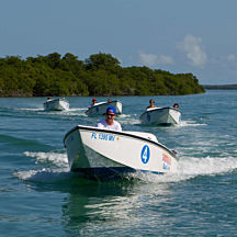 Drive Your Own Speedboat in Key West