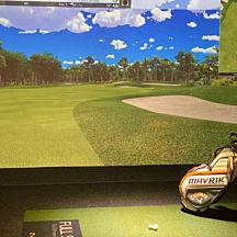 Swing Simulator Golf Lesson