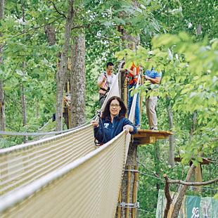 Springfield Canopy Tour