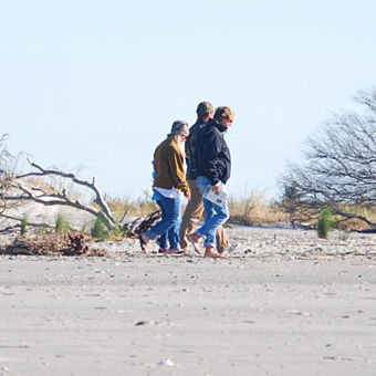 Discover Fossils in Charleston