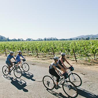 Tour Napa Valley by Bike
