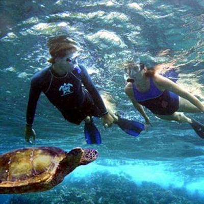 Snorkeling on Maui