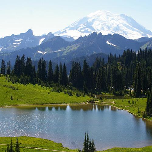 Amazing Landscape at Mt Rainier in Portland