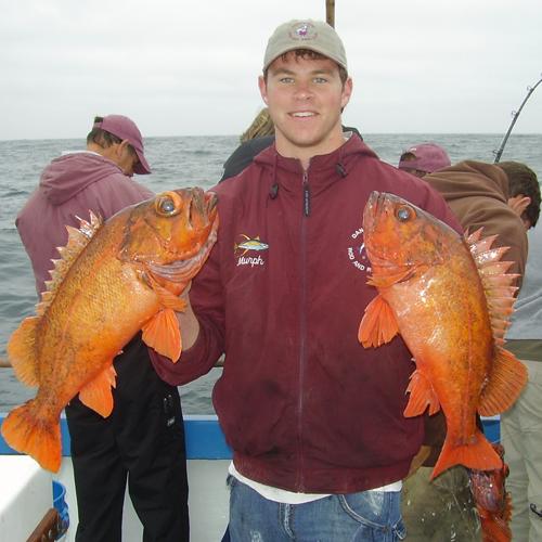 Newport Beach Sportfishing in Los Angeles