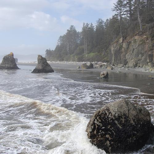 olympic-national-park-beaches
