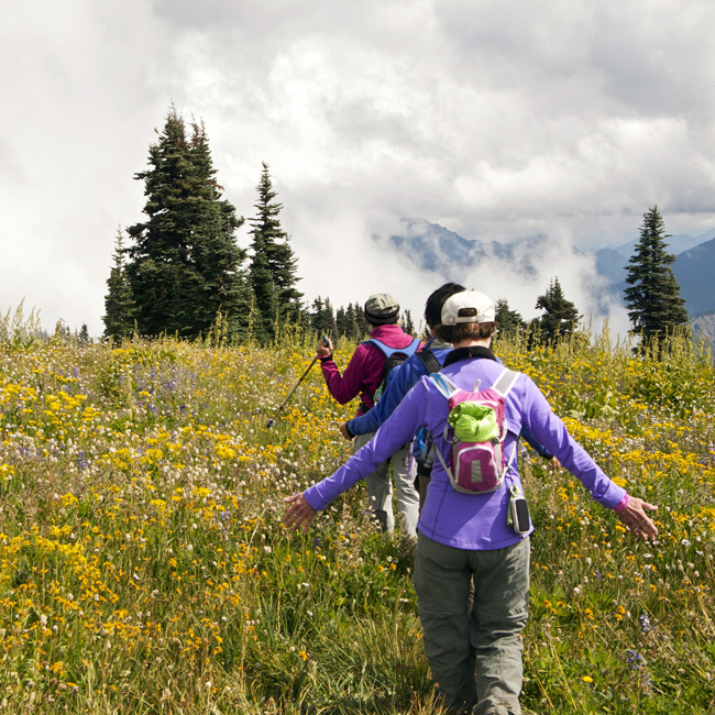 Guided 3-Day Tour of Olympic National Park