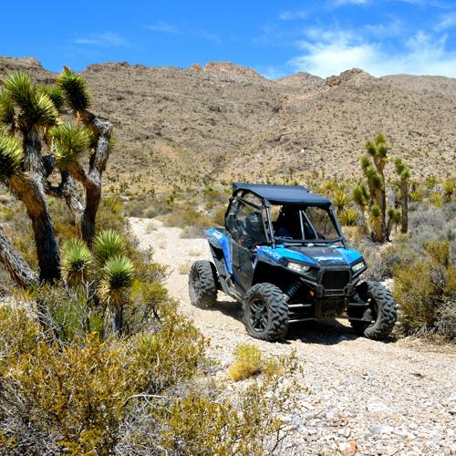 Las Vegas Desert Driving