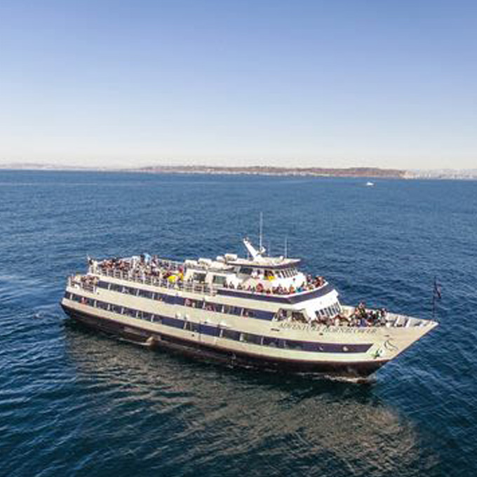Dinner Cruise in San Diego