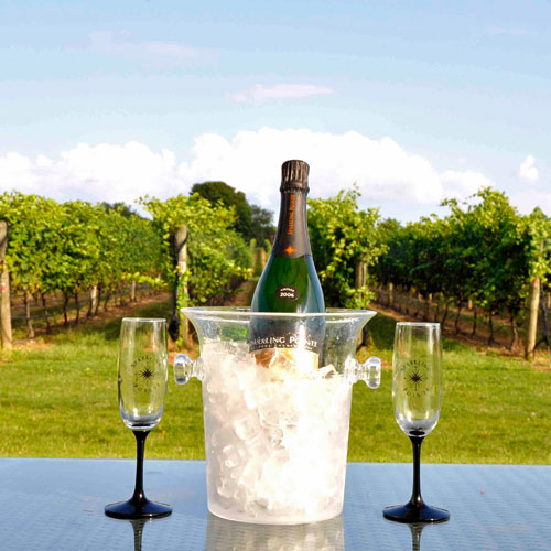 Intimate Vineyard Tour and Tasting in New York