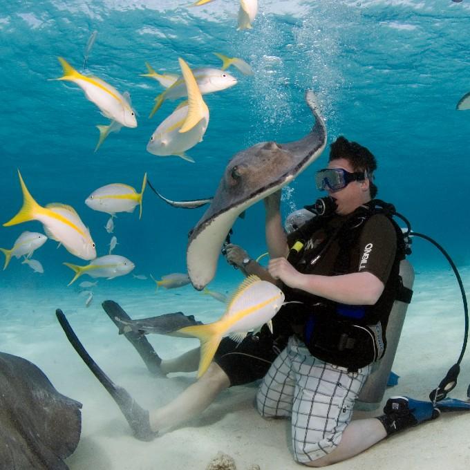 Scuba Diving near Washington DC