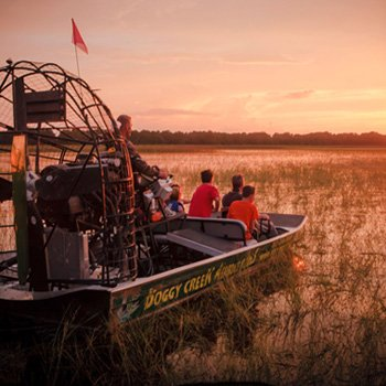 Sunset Airboat Tour near Orlando