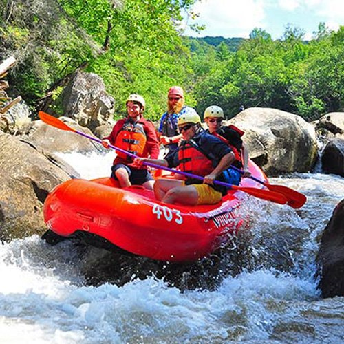 Guided Whitewater Rafting Experience in Pittsburgh