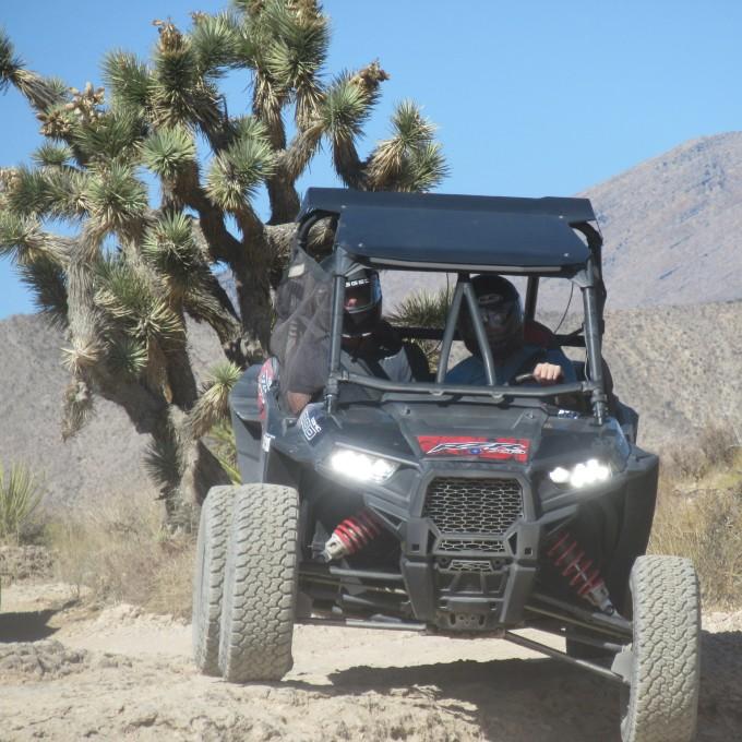 Desert Adventure in Las Vegas, NV